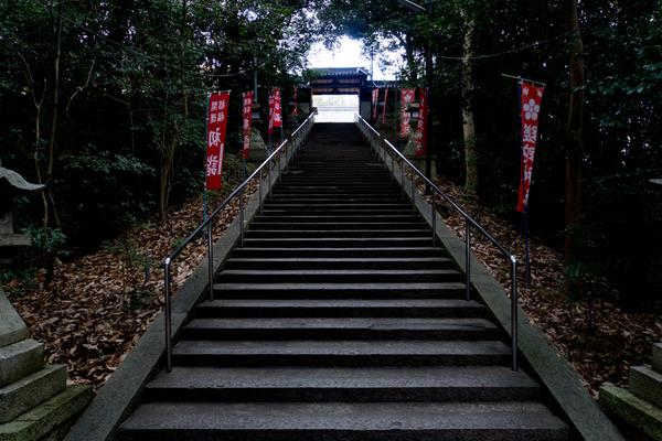 さだ神社-15121901