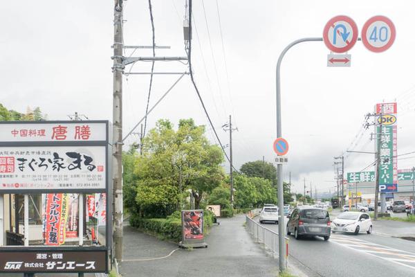 唐膳-1809015