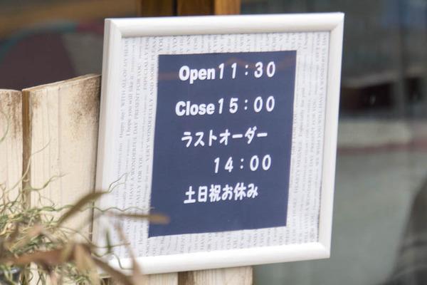 ジャパンイチゴ-1605107