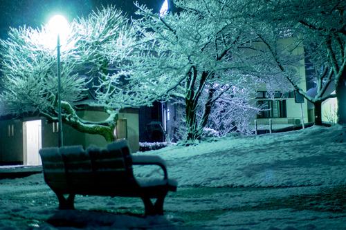 雪の正月-23