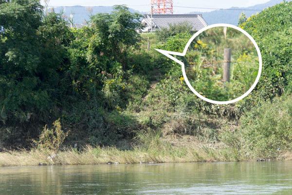 淀川-1610129