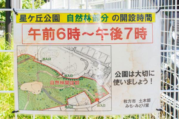 星ヶ丘公園-1910092