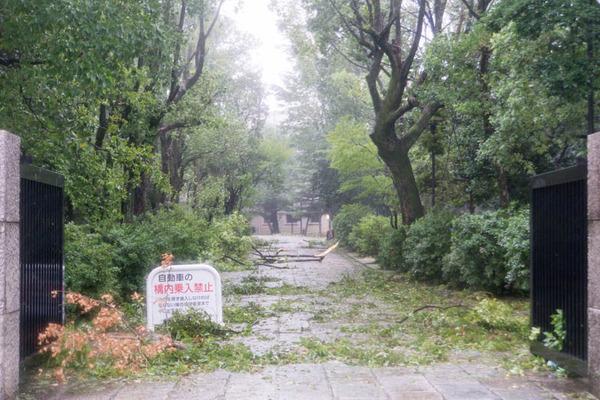 台風21号-18090413