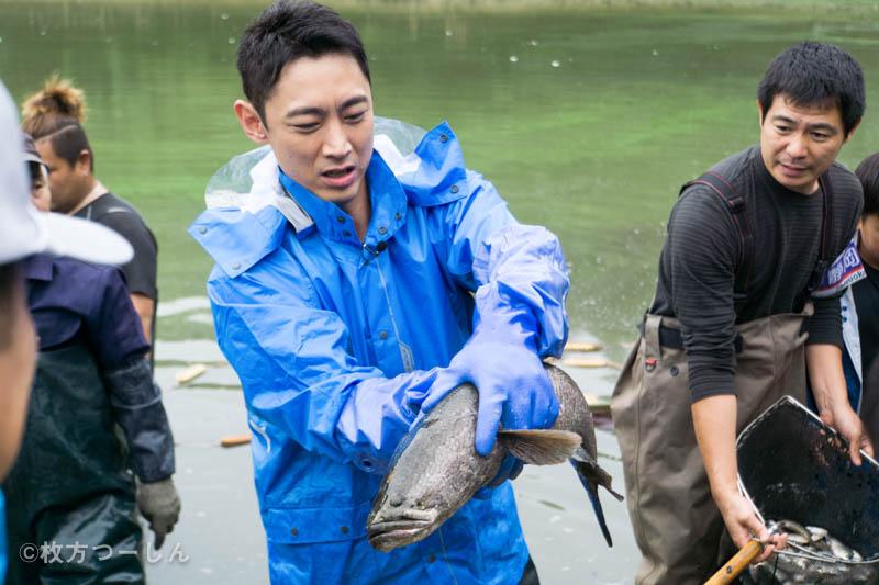 11月26日(日)放送「緊急SOS!池の水ぜんぶ抜く大作戦5」のTwitter感想まとめ【ひらつーまとめ】