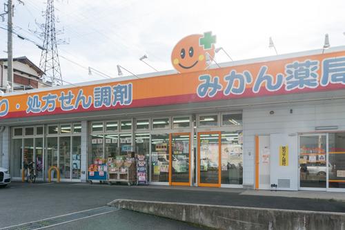 みかん薬局-1412102