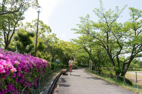 trusty-auka-otokoyama-24