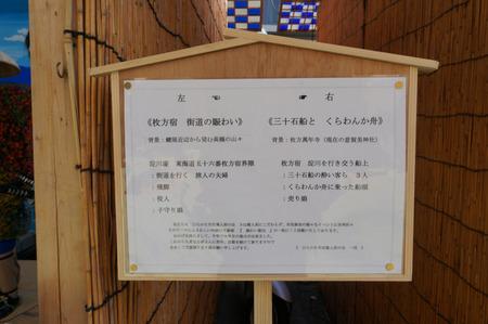 菊花展131105-36