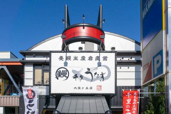 うなぎ-1911062