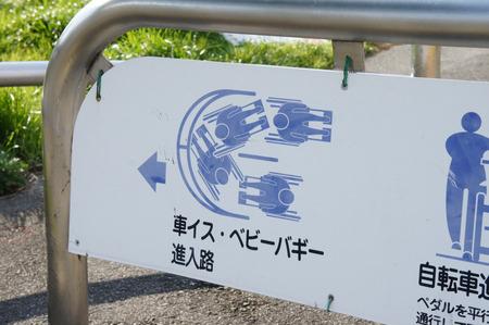 かささぎ橋130101-03