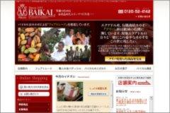 20110721baikal3