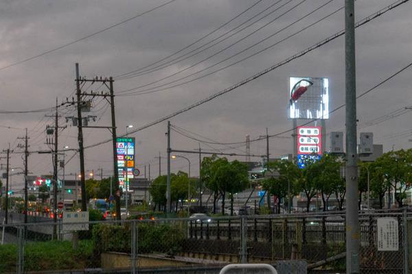 津田-1809041-12
