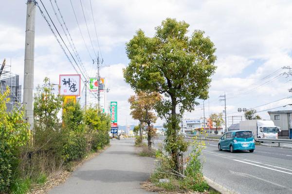 ラーメン神-2003243
