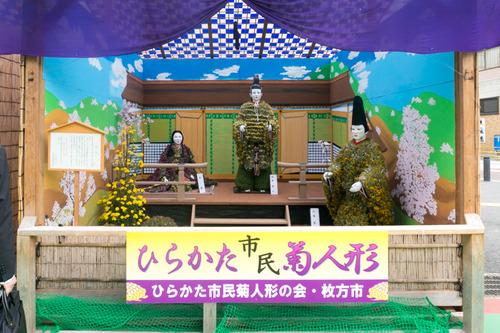 菊花展-14103133