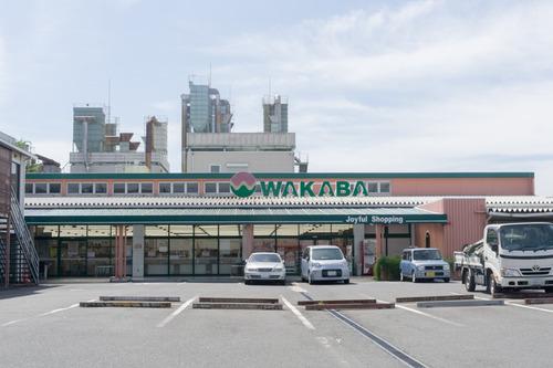 スーパーワカバ大峰店-15090503