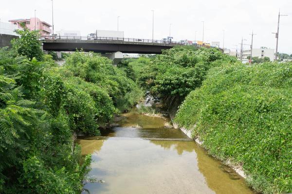 穂谷川-1908221-7
