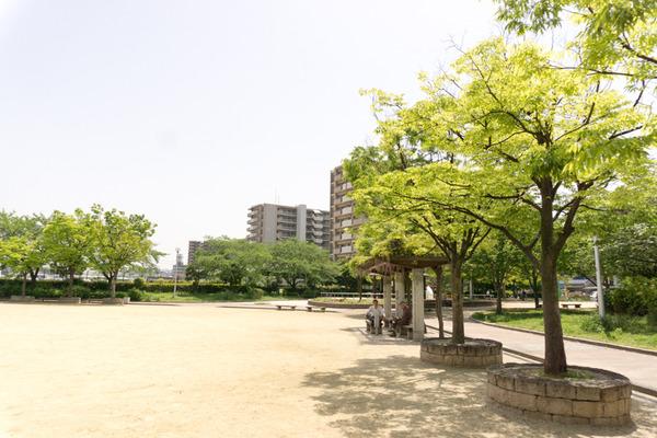 出口ふれあい公園-1