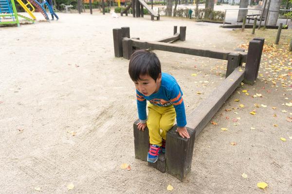 すい公園-16112015