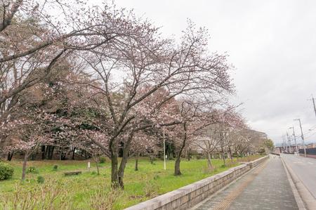 車塚公園-12