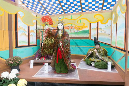 菊花展-14103131