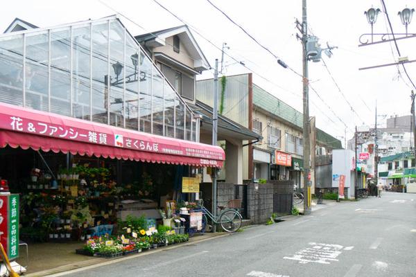 sakuranbo_広角_小-20200717-17