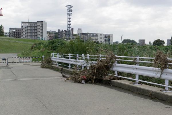 淀川-17102432