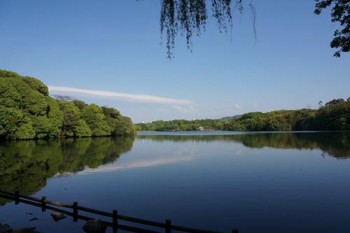 山田池公園-5
