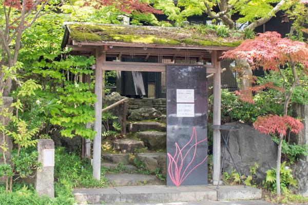 もみじ-2006261-3