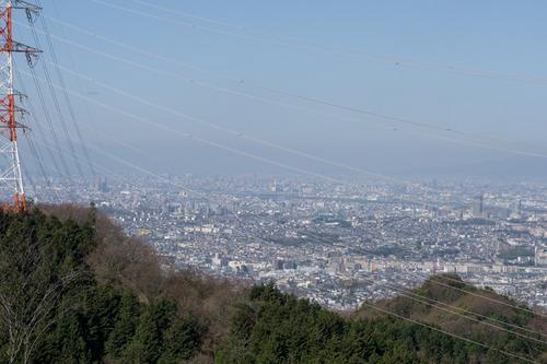 山-15040245