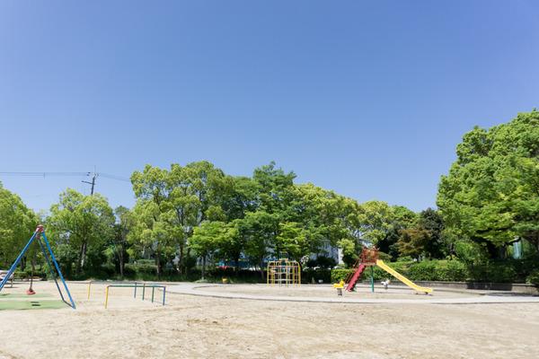 トラスティ飛鳥男山金振証言写真-29