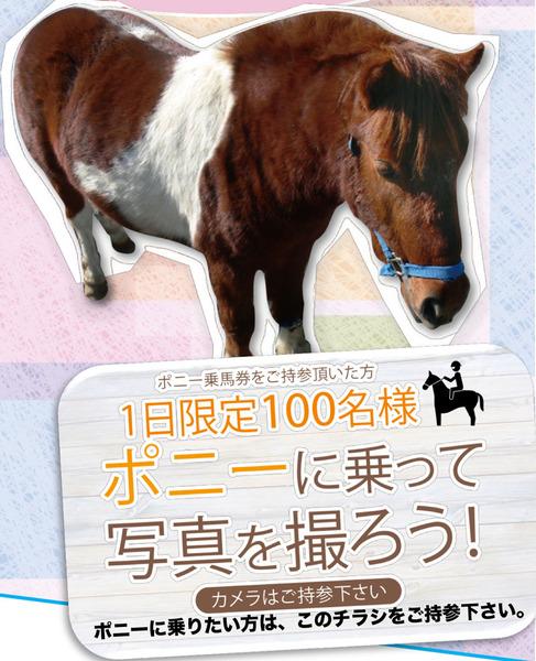 20181218香里ケ丘(動物園)1-1-1