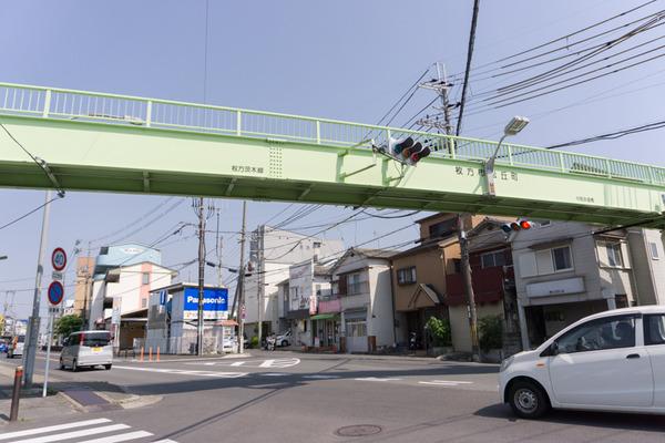 松丘-10