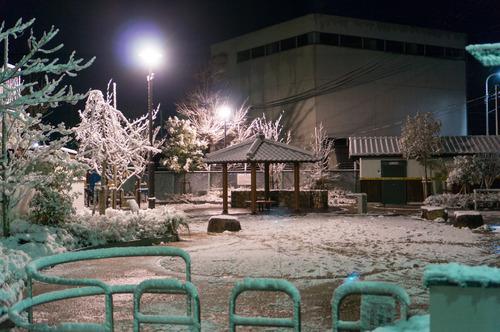 三矢公園-1