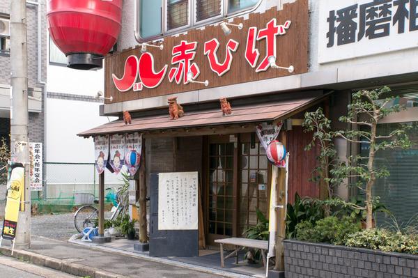 20171226赤ひげ-7