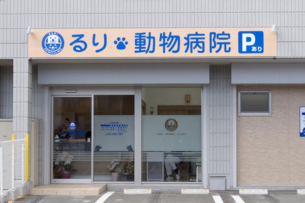 るり動物病院-16031507