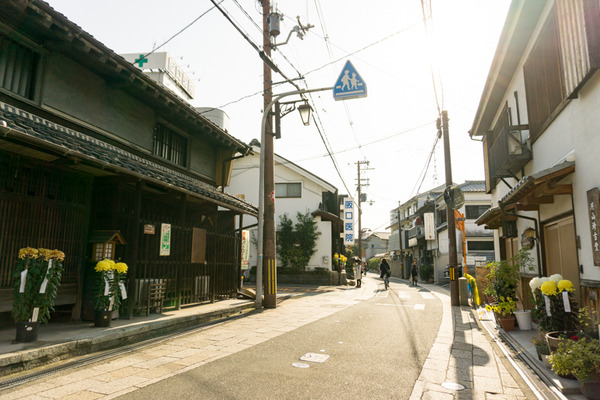 枚方宿街道菊花祭-9