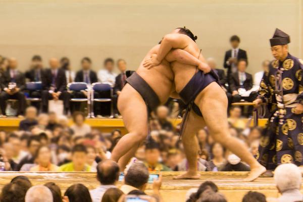 大相撲-17102063