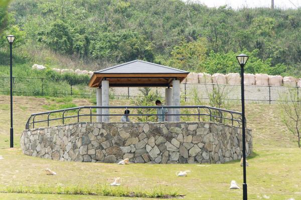 東部公園2-1705121
