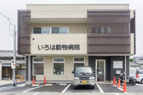 いろは動物病院-15061204