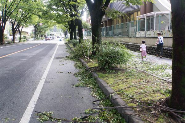 台風21号3-18090552