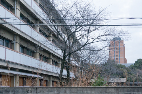 関西外大-15030802
