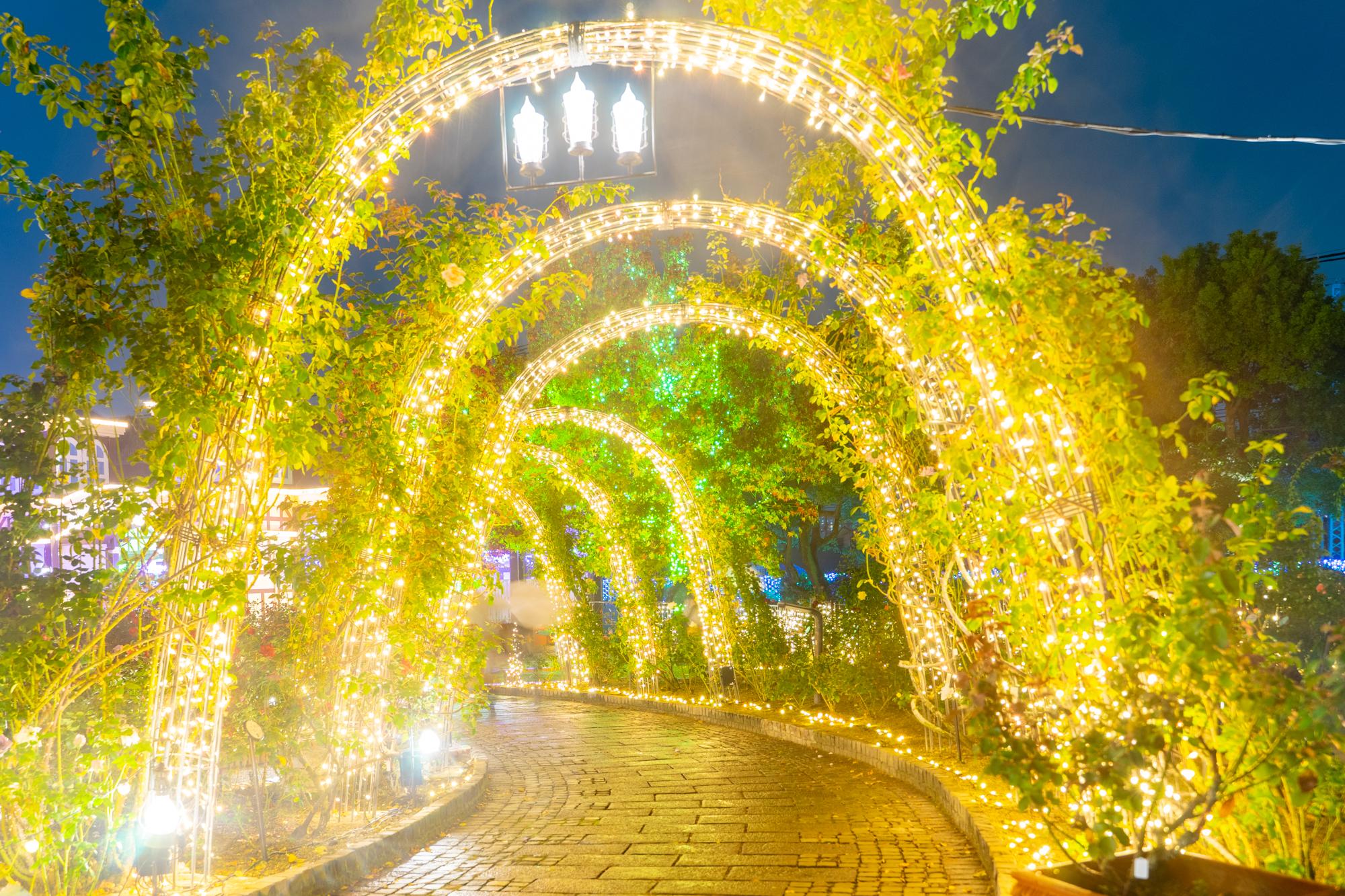 光の遊園地-20110724