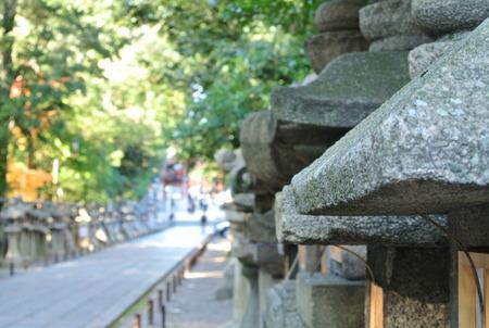 石清水八幡宮の紅葉131203-07
