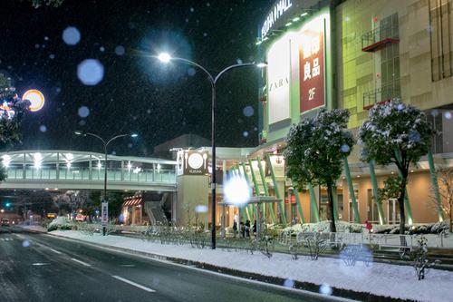 雪の正月-31