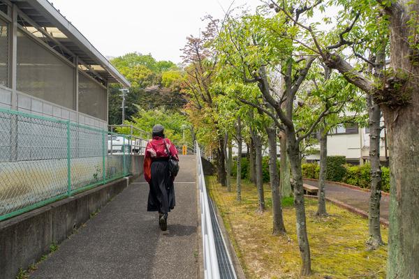 菊丘南公園-2004175