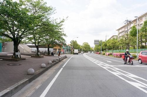 trusty-auka-otokoyama-29