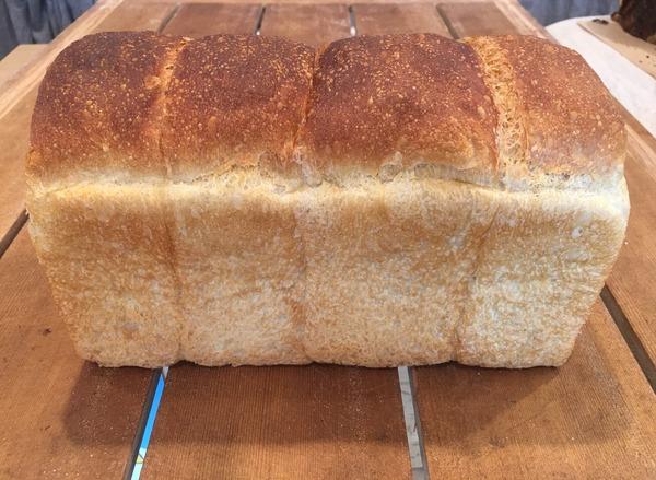風土火水日替わり食パン