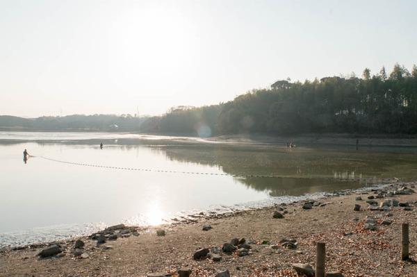 池の水全部抜く-1801209
