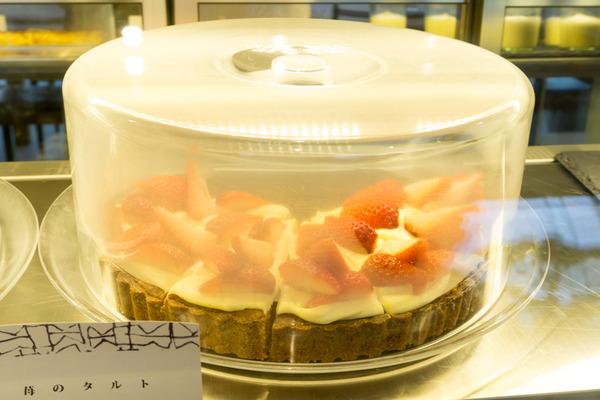 苺のタルト-1704181