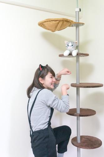 猫マンション-15121039