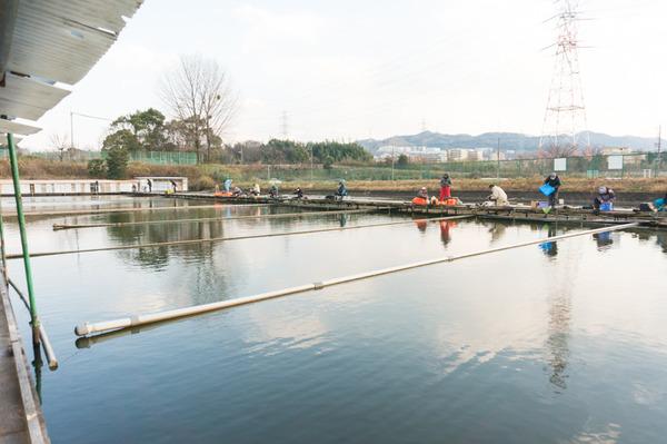 藤阪まちブラ-32